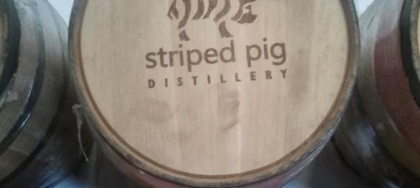 striped-pig-barrel